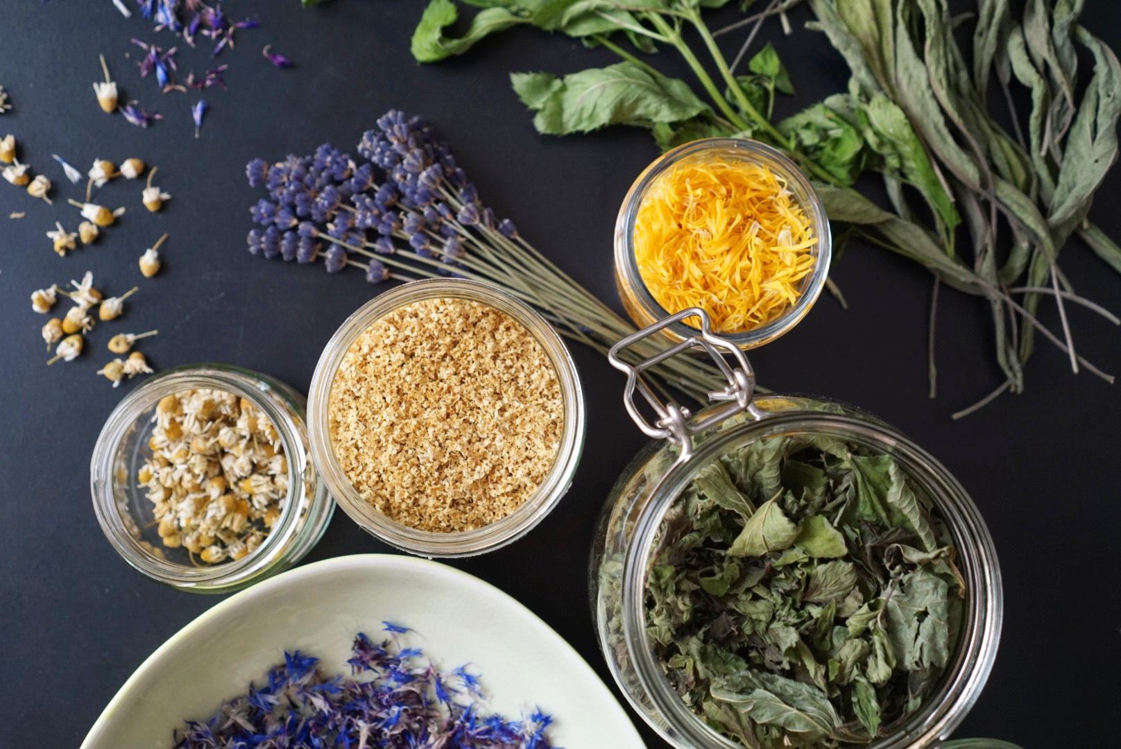 Gemeinsame Teekräuter sammeln und trocknen » Ye Olde Kitchen | Food- und #KQ_75